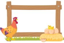 Animals: On The Farm - Chicken Frame
