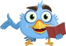 RoBird Plumage - Book