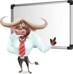 Business Buffalo Cartoon Vector Character - Making a Presentation on a Blank white board
