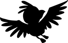Animals: Best Buds - Parrot Landing Silhouette