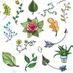 Vector Hand Drawn Elements Mega Bundle - Vector Floral Hand Drawn Elements Design Assets