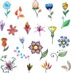 Vector Hand Drawn Elements Mega Bundle - Colorful Hand Drawn Floral Elements Design Set