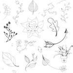Vector Hand Drawn Elements Mega Bundle - Graphic 54