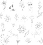 Vector Hand Drawn Elements Mega Bundle - Graphic 64