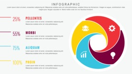 Infographic Templates Collection - Vector, Photoshop, PowerPoint, Google Slides - 4 Options Circle Infographic Template