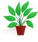 Plant in a Flowerpot