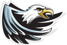 Vector Mascot Collection - Angry Eagle Mascot Graphic