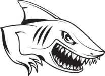 Vector Mascot Collection - Simple Shark Mascot Graphic