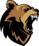Vector Mascot Collection - Bear Mascot Design