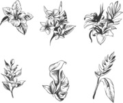 Nature Backgrounds, Patterns and Frames Themed Graphic Collection - Set of Baroque Vintage Tropical Flowers