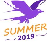 Summer Vector Graphics - Mega Bundle - Vector Summer Logo Design Template with Flying Bird