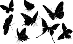 Vector Silhouettes Mega Bundle - 8 Vector Butterfly Silhouettes Set