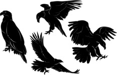 Vector Silhouettes Mega Bundle - Vector Eagle Silhouettes Set