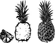 Vector Silhouettes Mega Bundle - Vector Pineapple Silhouettes Set