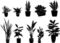 Vector Silhouettes Mega Bundle - Vector Office and Home Plants in a Pot Silhouettes Set