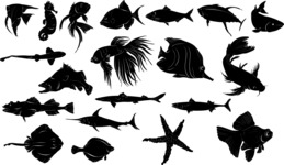 Vector Silhouettes Mega Bundle - 20 Vector Fish Silhouettes Set
