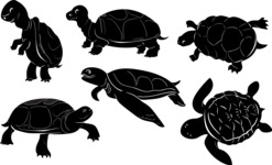 Vector Silhouettes Mega Bundle - Vector Turtle Silhouettes Set