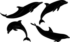 Vector Silhouettes Mega Bundle - Vector Dolphin Silhouettes Set