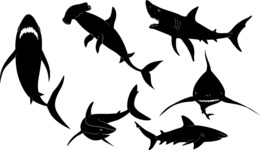 Vector Silhouettes Mega Bundle - Vector Shark Silhouettes Set