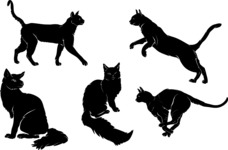 Vector Silhouettes Mega Bundle - Cat Vector Silhouettes Set