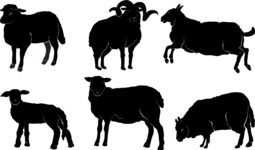 Vector Silhouettes Mega Bundle - Vector Sheep Silhouettes Set