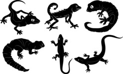 Vector Silhouettes Mega Bundle - Vector Lizard Silhouettes Set