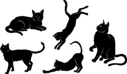 Vector Silhouettes Mega Bundle - Vector Cat Silhouettes