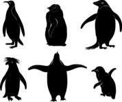 Vector Silhouettes Mega Bundle - Vector Penguin Silhouettes Set