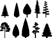 Vector Silhouettes Mega Bundle - Simple Vector Tree Silhouettes Set