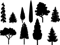 Vector Silhouettes Mega Bundle - Vector Tree Icon Silhouettes Set
