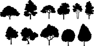 Vector Silhouettes Mega Bundle - Simple Deciduous Tree Silhouettes Set
