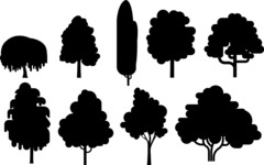 Vector Silhouettes Mega Bundle - Simple Tree Icon Silhouettes