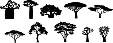 Vector Silhouettes Mega Bundle - Vector Exotic Trees Silhouettes Set