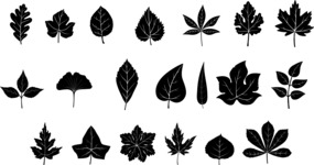 Vector Silhouettes Mega Bundle - Vector Leaf Silhouettes Set
