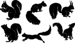 Vector Silhouettes Mega Bundle - Vector Squirrel Silhouettes Set