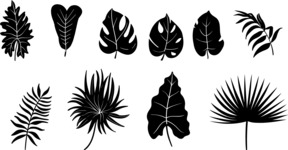 Vector Silhouettes Mega Bundle - Vector Exotic Leaf Silhouettes Set