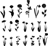 Vector Silhouettes Mega Bundle - Vector Flower Silhouettes Set