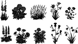 Vector Silhouettes Mega Bundle - Flower Garden Silhouettes Vector Set