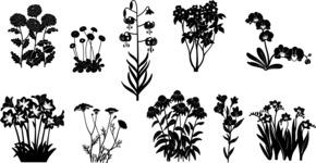 Vector Silhouettes Mega Bundle - Floral Silhouettes Vector Set