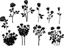 Vector Silhouettes Mega Bundle - Vector Roses Silhouettes Set