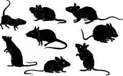 Vector Silhouettes Mega Bundle - Vector Mouse Silhouettes Set