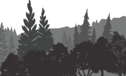 Vector Silhouettes Mega Bundle - Transparent Vector Landscape Silhouette