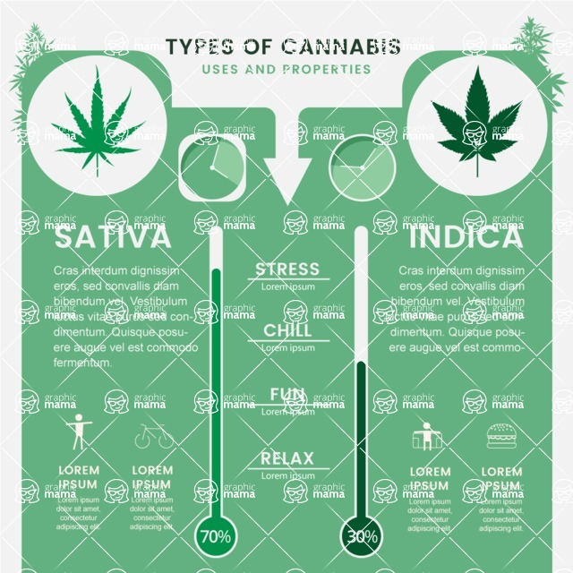 Infographic Templates Collection - Vector, Photoshop, PowerPoint, Google Slides - Weed Comparison Infographic Template